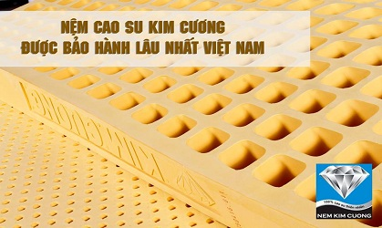Nệm Cao Su Tự Nhiên Kim Cương happygold 1m6x2mx5cm